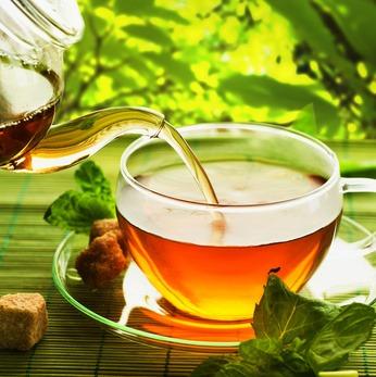 Découvrez les très nombreux bénéfices du thé vert pour la santé de l'homme
