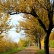C'est l'automne. 3 commandements pour débuter cette période