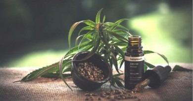 Le cannabis au service de la beauté masculine